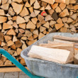 Firewood — Stock Photo #9202421