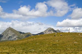 Summer mountain panorama with pasture in South Tyrol, Italy — Stock Photo
