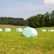 Hay bales in plastic bags in spring — Stock Photo
