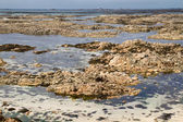 Fondale marino al largo del jersey, regno unito, con la bassa marea — Foto Stock