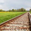 Railway Line in Spring - Stock Photo