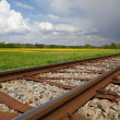 Railway Line in Spring — Foto Stock