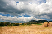 Countryside of le Marche, Italy — Stock Photo