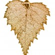 Stock Photo: Birch leaf plated in gold