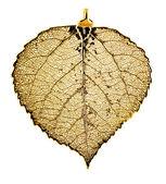 Kavak yaprağı kolye altın — Stok fotoğraf