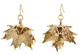 Maple earrings in fine gold — Стоковое фото