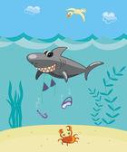 Shark attack — Stock Vector