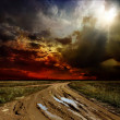 Countryside landscape with dirt road after rain, Russia — Stock Photo #9245491