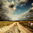 Countryside landscape with dirt road after rain, Russia — Stock Photo #9245519
