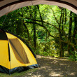 View looking out of door of sun-filled tent upon great outdoors — Stockfoto