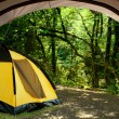 View looking out of door of sun-filled tent upon great outdoors — Stock fotografie