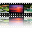 Film strip with different photos - life and nature (my photos) — Stock Photo