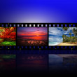 Film strip with different photos - life and nature (my photos) — Stock Photo #9246331
