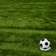 Royalty-Free Stock Photo: Football grass background in light and shadow