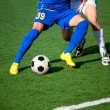Stock Photo: Part of legs-soccer or football theme