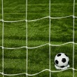 Football. The ball flies into the net gate — Stok fotoğraf