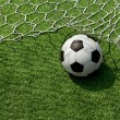 Football. The ball flies into the net gate — 图库照片