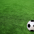 Soccer ball on green grass — Stock Photo #9246458