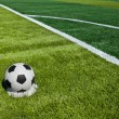 Soccer ball on green grass — Stock Photo #9246462
