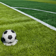 Soccer ball on green grass — Stock Photo #9246497
