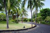 Jardín exótico de bali — Foto de Stock