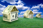 Three houses on a lawn — Stock Photo