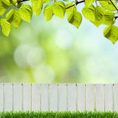 A fence is a freestanding structure designed to restrict or prevent movement across a boundary. — Stock Photo
