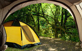 View looking out of door of sun-filled tent upon great outdoors — ストック写真