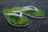 Beach slippers with a grass on city asphalt — Stock Photo