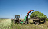 Tractor in the field of transports hay — Stock Photo