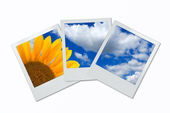 Blank photoframe — Stock Photo
