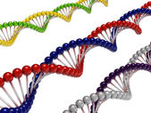 DNA Chains — Stock Photo