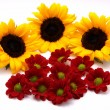 Royalty-Free Stock Photo: Sunflowers and gerberas
