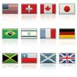Vector International Flag Icons — Stock Vector