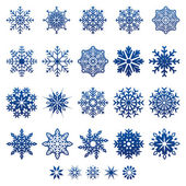 Vector Snow Flakes — Stock Vector
