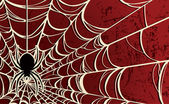 Vector Spider Web Background—Red — Stok Vektör