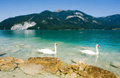 Wolfgangsee in Austria — Stock Photo