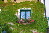 Window of a house in Austria — Stock Photo