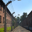 Auschwitz Birkenau — Stock Photo #9243871