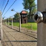 Auschwitz — Stock Photo #9243915