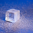 Stock Photo: Ice cube covered with hoarfrost