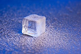 Ice cube covered with hoarfrost — Stock Photo
