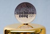 Soçi, rusya üzerinde şubat 2014 yılında xxii kış olimpiyat oyunları hatıra paraları. — Stok fotoğraf