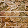 Leaf wall texture is natural wall — Stock Photo
