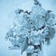 A bouquet of colorful flowers - Foto Stock