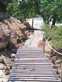 Přímořské dřevěný most — Stock fotografie
