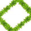 Photo: Natural green leaf frame