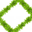 Foto de Stock  : Natural green leaf frame
