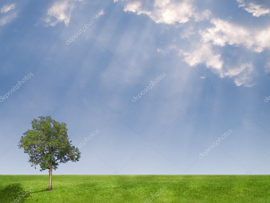 Beautiful cloud over field of green meadow with lonely tree and rays from heaven — Stock Photo #10395161