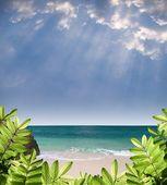 Vista del paraíso de verano — Foto de Stock